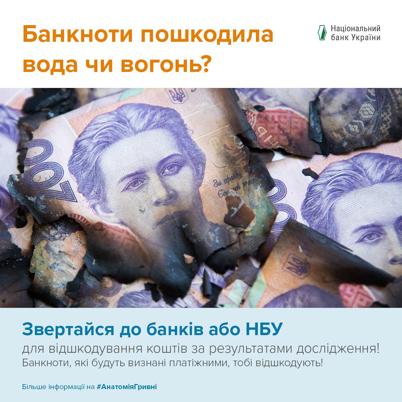 Анатомія гривні - фото 2 - mtb.ua