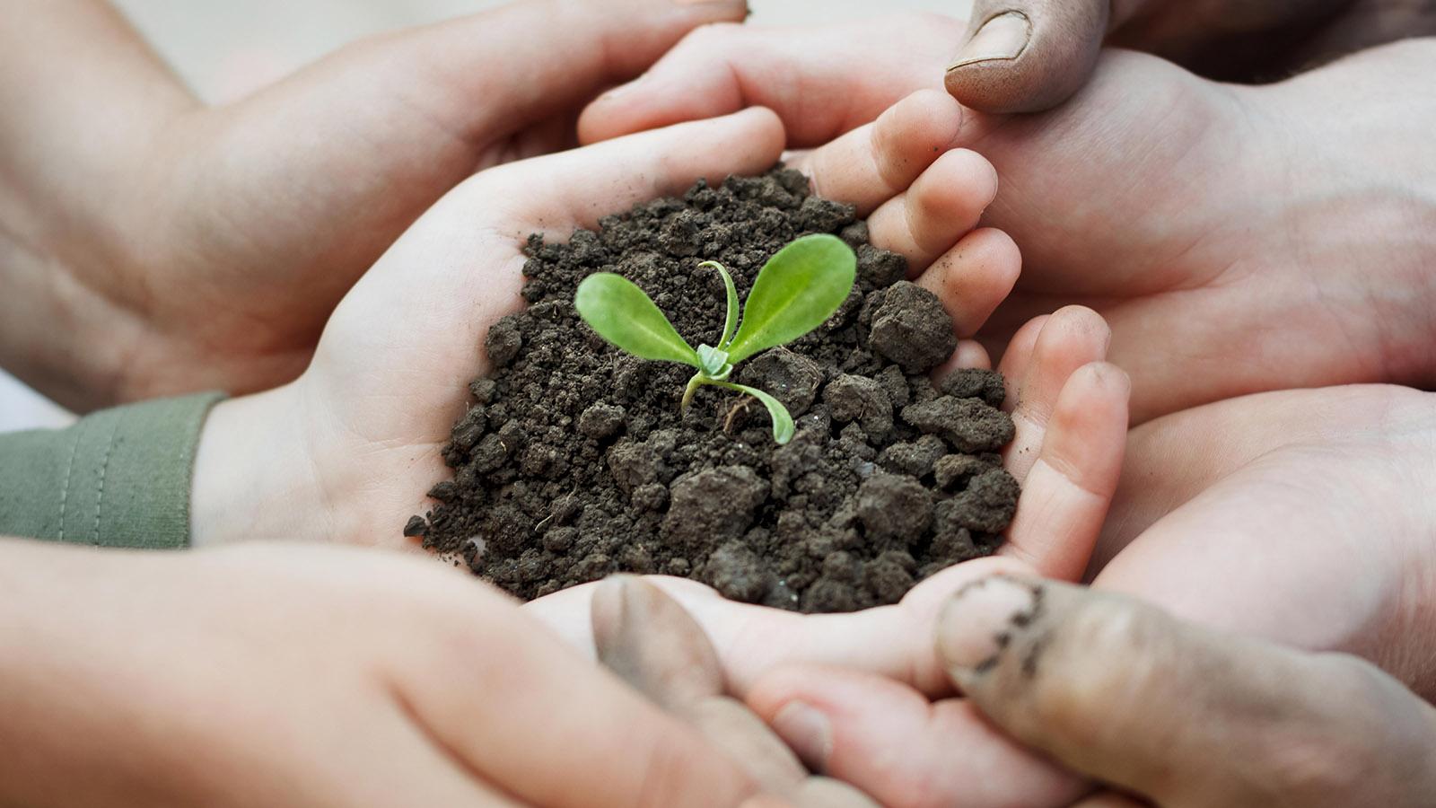 PARTNERSHIP PROGRAM FOR AGRICULTURAL PRODUCERS - photo - mtb.ua