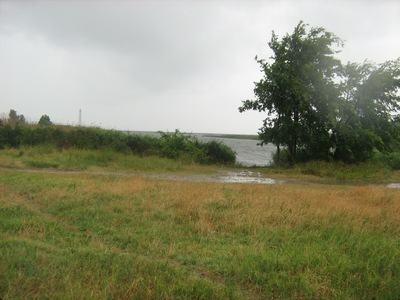 Земельна ділянка на березі Дніпра, Виноградне, Херсонська область