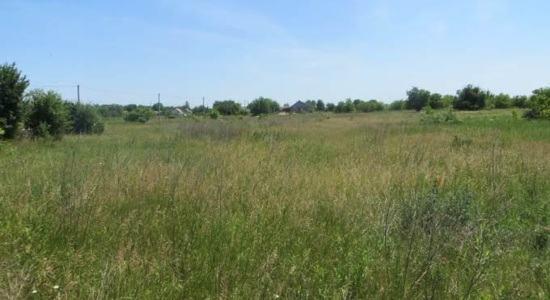 Land in the village. Benefit, Odessa region, Belyaevsky district