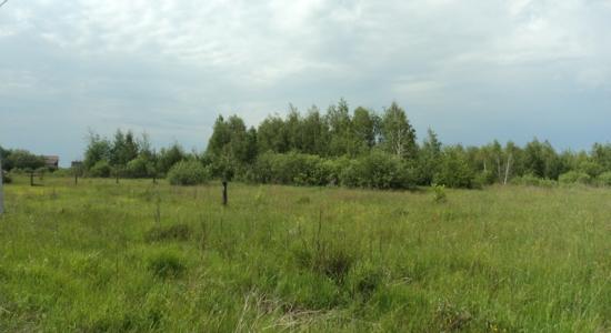 Земельна  ділянка в смт. Бабинці Бородянського району