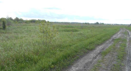 Земельна ділянка поруч з Новообухівською трасою