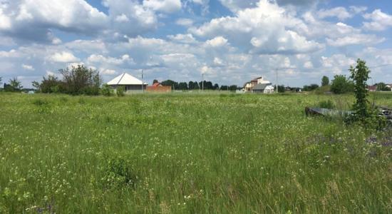 Земельна ділянка в селі Велика Димерка, вул. Сім`ї Сидоренка