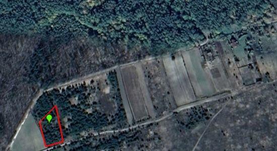 Land in the village. Nezhilovichi, Kiev region, Makarovsky district