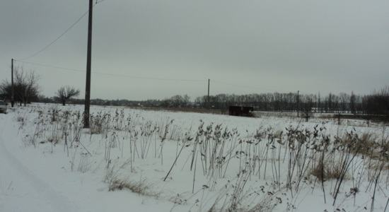 Land plots in with. Tripolye, Kiev region, Obukhov district