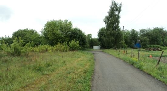 Land plots in with. Kobtsy, Kiev region, Vasilkovsky district
